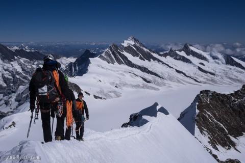 Una cordata in discesa sulla cresta esposta del Monch.