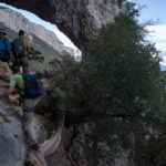 Arco Su Feilau, Selvaggio Blu.