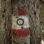 """Vecchi segni del sentiero """"Zero"""", ufficialmente chiuso da un pò di anni."""